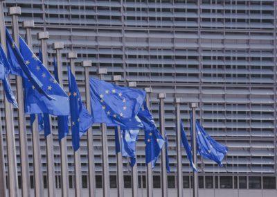 Stanowisko WEI: Eko-socjaliści ręce precz od wolnego rynku