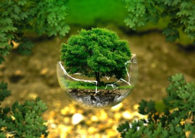 Nowy Zielony Ład dla Ziemi